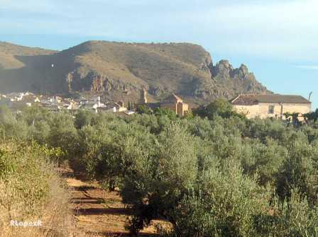 El cortijo de la Quinta, casco histórico de Cabra y cerro de los Cangilones