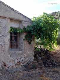 Cortijo junto al Molino Barranco