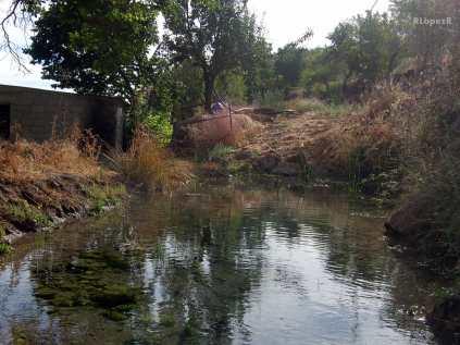 Nacimiento del Molino Barranco