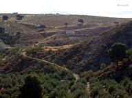 El Gamelloncillo y los Llanos