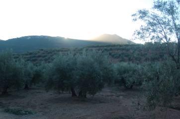 Cuerda de los Toriles y cerro de la Umbría