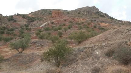 Desde el barranco de la Viñuela mirando hacia el cerro de los Cangilones