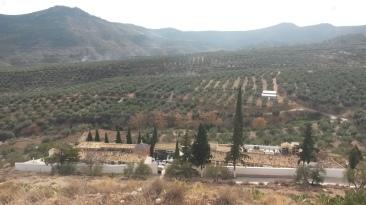 Cara Sur del cerro, donde existen más restos de la antigua población y el cementerio.
