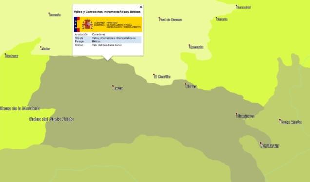 Paisaje que caracteriza la mayor parte del término municipal de Cabra. Fuente: Atlas de los Paisajes de España (Ministerio de Agricultura, Pesca y Alimentación, 2004)