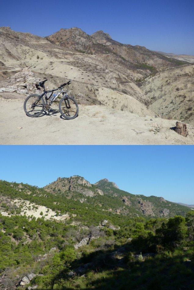 Comparativa del antes y después de un enclave de las Dehesas del Guadiana afectado por el incendio de 2015. Fuente: Juan D. Cano http://entremaginaycazorla.blogspot.com/