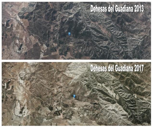 Comparativa del antes y después de la zona de las Dehesas del Guadiana afectada por el incendio de 2015 (puntero situado en la peña del Cambrón). Fuente: http://geamap.com/ortofoto-espana#5/37.300/-4.900