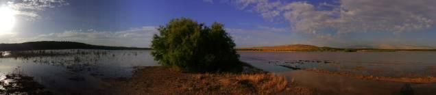 La laguna de San Pedro durante la primavera de 2015. Fotografía de Antonio Jesús Martínez Leiva.